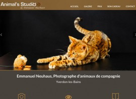 photographe animaux