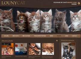 site web éleveur chat